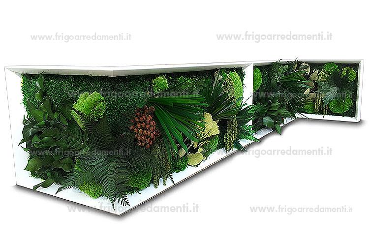 piante stabilizzate idee per il design della casa